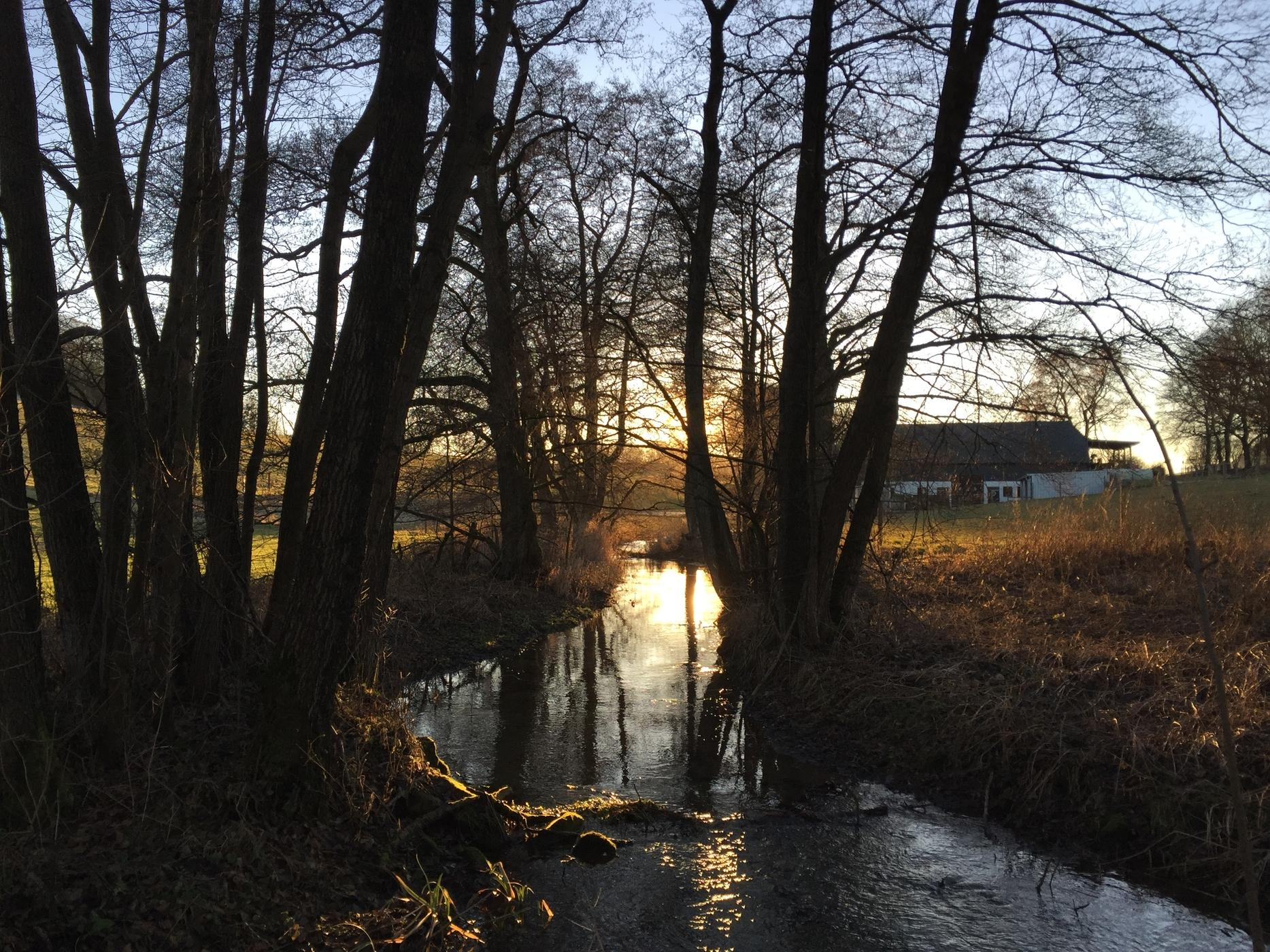 Sunset at a stream